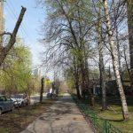 Начались общественные обсуждения проекта межевания в поселке художников на Соколе