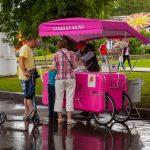 Не слипнется: управа Коптева купит аппарат для сахарной ваты за сотни тысяч рублей