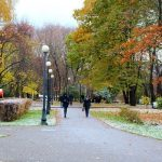 Активисты выступили против нового благоустройства Петровского парка